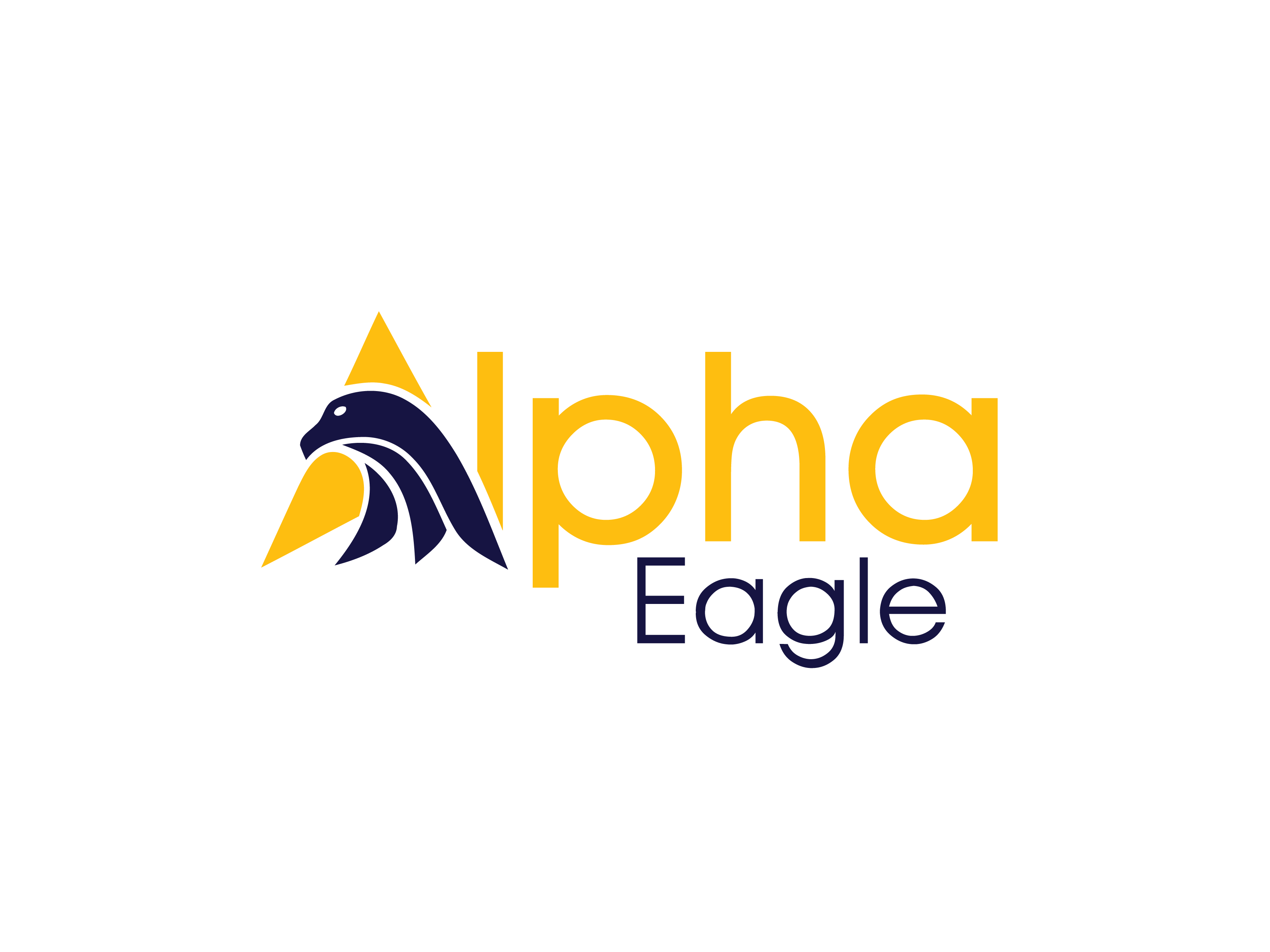 Alpha Eagle Aviation and Science Foundation Fund